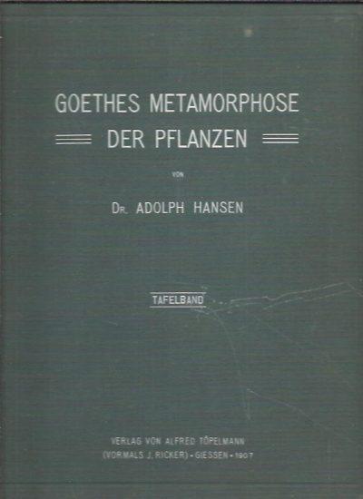 Goethes Metamorphose der Pflanzen. Geschichte einer Botanischen Hypothese. I - Text. II - Tafelband mit 9 Tafeln von Goethe und 19 Tafeln vom Verfasser. GOETHE - Adolph HANSEN